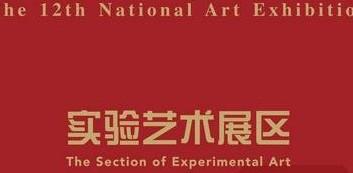 第十二届全国美展·实验艺术展