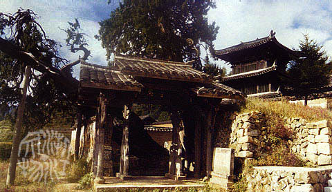 景寧時思寺