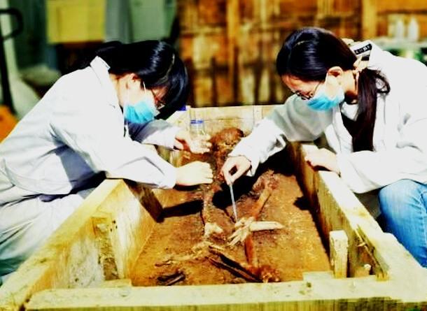 高端科技助推考古新理念
