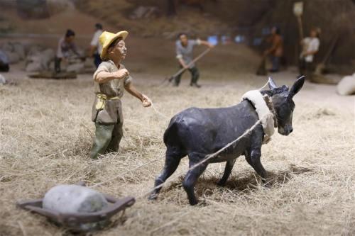 小麦博物馆河南温县开馆迎客