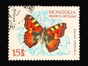 郵票收藏應該如何收