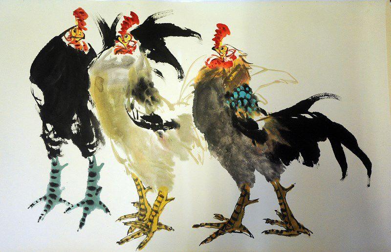 鸡的结构可分为头,颈,躯干,尾和腿爪几部分.