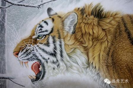 现存有5个亚种分别为:孟加拉虎,华南虎,东北虎,苏门答腊虎,印度支那虎