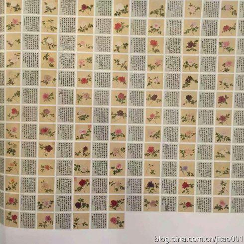 蒋廷锡《百种牡丹谱》-图片版权归原作者所有