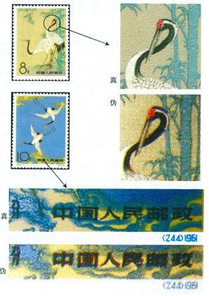 特48《丹顶鹤》邮票的真伪鉴别