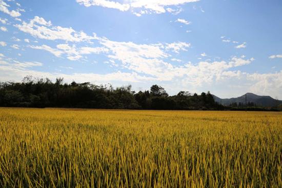 [湖州]安吉县新增3处省级文物保护单位