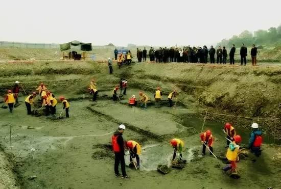 30多位国内考古学家参观发掘现场-图片版权归原作者所有