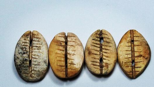 中国最早的货币——贝币 商代前贝币价值很高