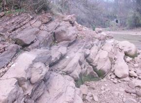 衡东大浦发现汉代墓群及印纹硬陶窑址
