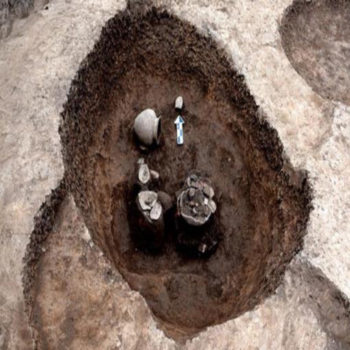 叶县孙家岗遗址考古发掘获重要发现