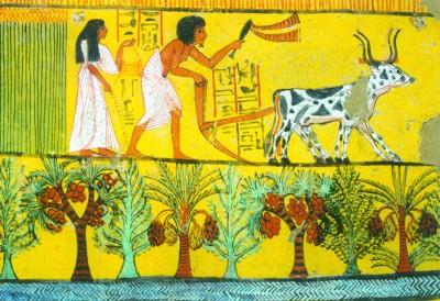 反映人类驯化动物的古埃及壁画-图片版权归原作者所有
