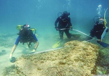 考古学家发现被海啸吞噬的古罗马城市