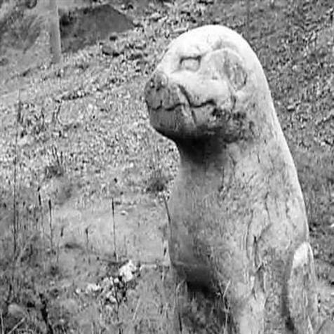 涞水县出土8件珍贵石像生 疑似允禧墓地内文物