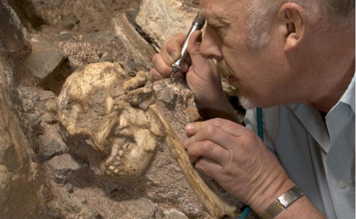 考古学家揭示有史以来发现的最完整的360万年前人类祖先骨架