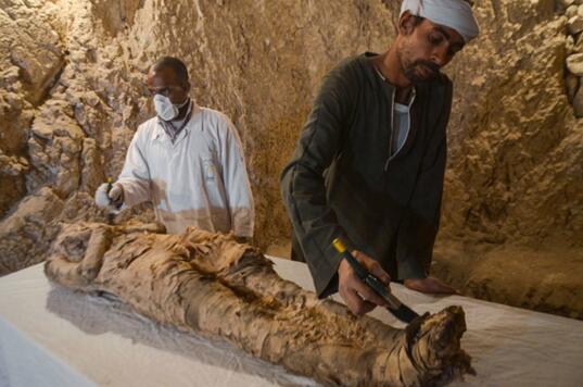 埃及考古学家在卢克索新发掘古墓中发现木乃伊
