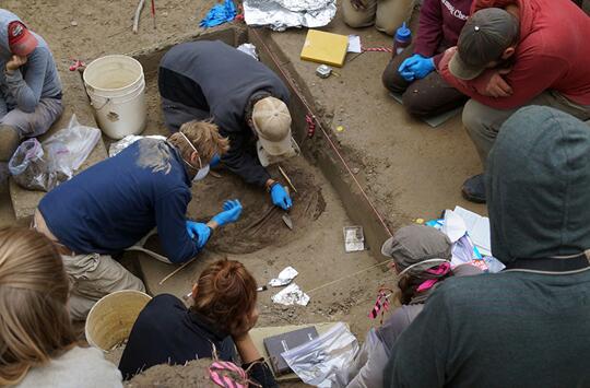 古婴遗骸帮助阿拉斯加大学科学家揭开美洲基因史