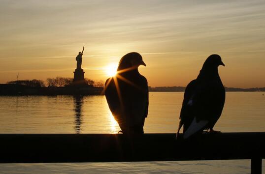 纽约州自掏腰包重新开放自由女神像