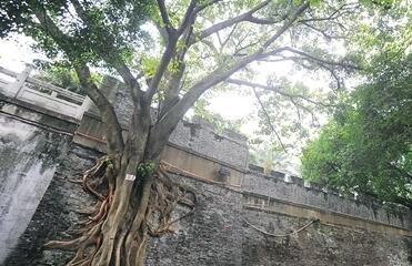 [南宁]新增23处区级文物保护单位