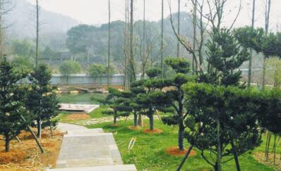 [绍兴]天章寺遗址将成为兰亭景区新景