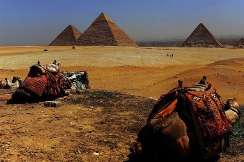 """埃及文化部推出""""你的遗产是责任""""活动"""