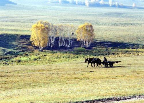 草原丝绸之路是科学概念