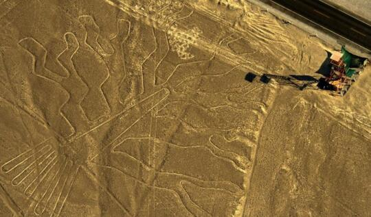 世界文化遗产纳斯卡地画遭卡车司机碾压