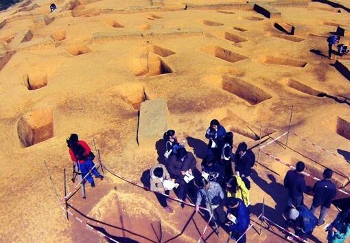 中新广州知识城考古获重要发现