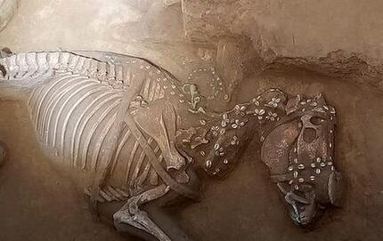 河北两项目入围2017年度全国十大考古新发现终评