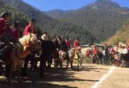 迪庆州公布第六批州级非物质文化遗产保护名录项目
