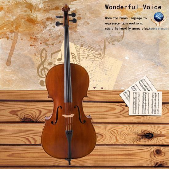 价值百万欧元的十八世纪大提琴在被抢数天后找回