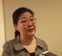 宋纪蓉:希望改善北京世界文化遗产参观区交通