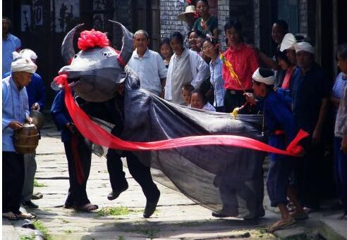 谈谈西沱民俗之西沱牛