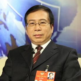 """马萧林:摸清我国文物""""家底"""" 下一步做好传承创新"""
