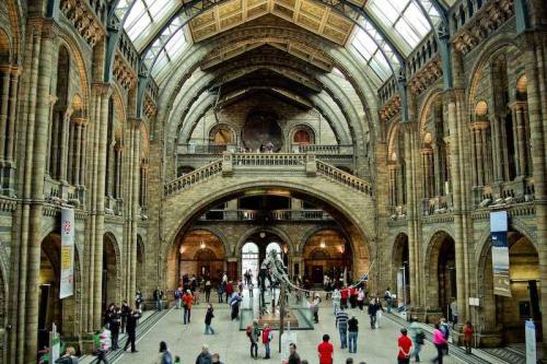资金投入不足,英国博物馆收藏事业遇阻力