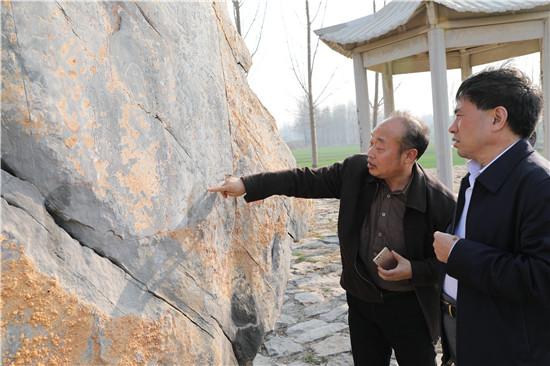 [鹤壁]市委书记范修芳到浚县调研大运河文化带规划建设