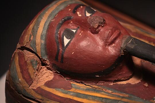 美国菲尔德博物馆木乃伊展览提供独特实践信息
