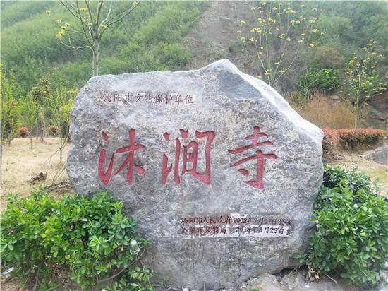 沁阳为3处文保单位刻立保护标志碑