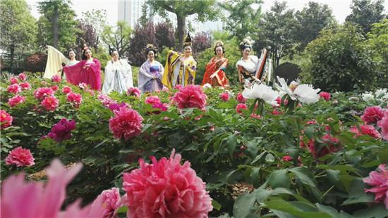 平顶山博物馆第二届牡丹节开幕