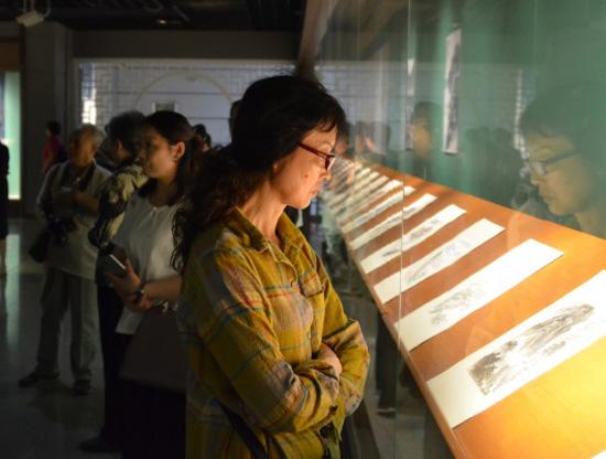 谭建丞山水画册页特展在湖州市博物馆展出