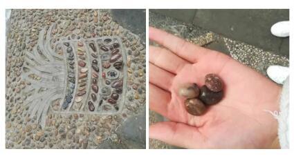 即便不是文物,故宫的石子也不应被私自带走
