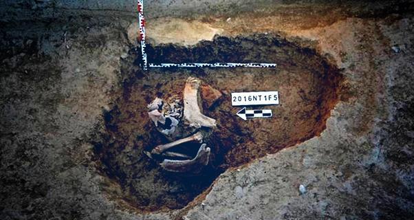 中国考古队首次进入伊朗开展发掘