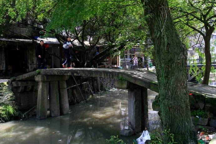 社会力量助力文物保护 瓯海十座古桥古亭修葺一新