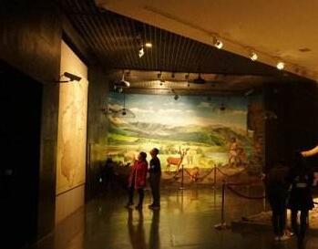"""参观体验更好""""博物馆热""""才能更持久"""