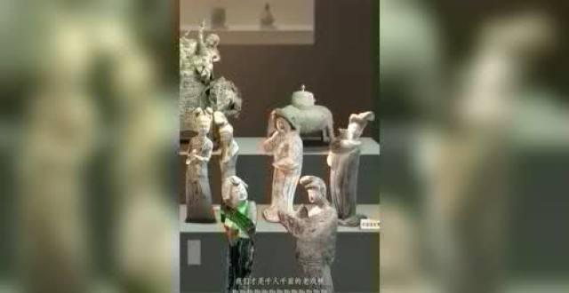 """浙博等7家博物馆入驻抖音 """"文物戏精大会""""播放量破亿"""