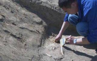 北庭故城启动最大面积考古发掘