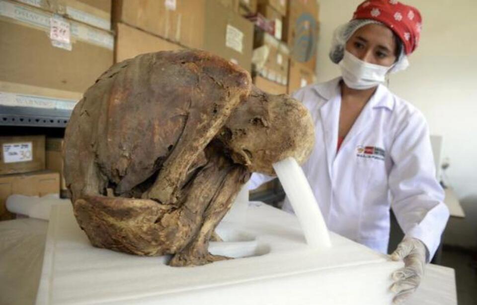 秘鲁出土一具保存完好木乃伊 至今已有千年历史