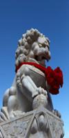 价值12万元的石雕狮子丢失