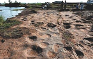 山东郯城县发现300个恐龙足迹