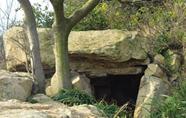 平阳西湾发现疑似石棚墓遗址