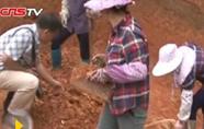 广西考古发掘8万年前旧石器时代遗址